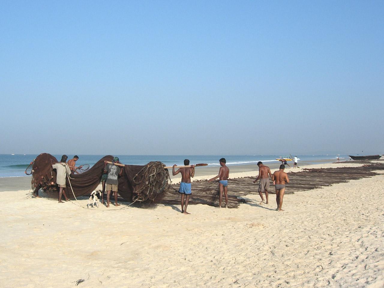пляжи крупный план фото
